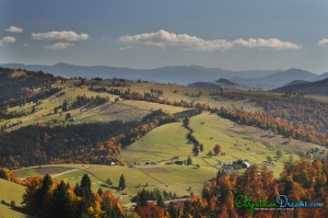 1. Autumn in the Carpathians