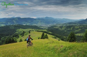 riding-in-the-green-country
