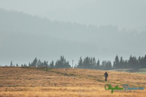 riding-into-the-wild-bucovina