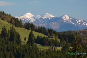 rodnei-mountains