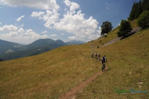 singletrail-in-the-carpathians