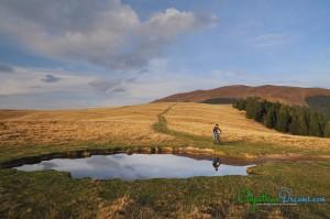 pond-in-giumalau-mountains