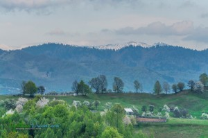 view-over-calimani-mountains