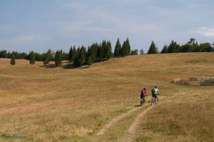 CarpathianDreams_mtb_Transylvania-0321