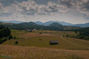 CarpathianDreams_mtb_Transylvania-0349