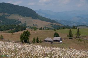 CarpathianDreams_mtb_Transylvania-0360