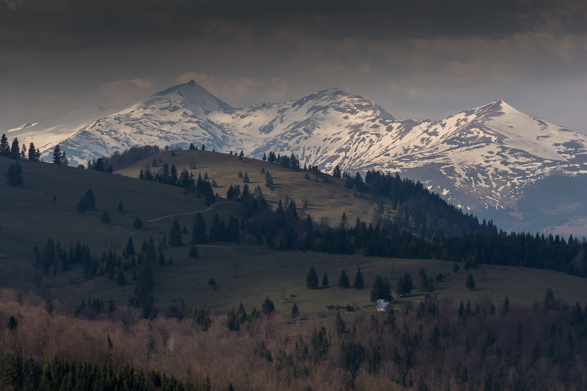 Charming Carpathians